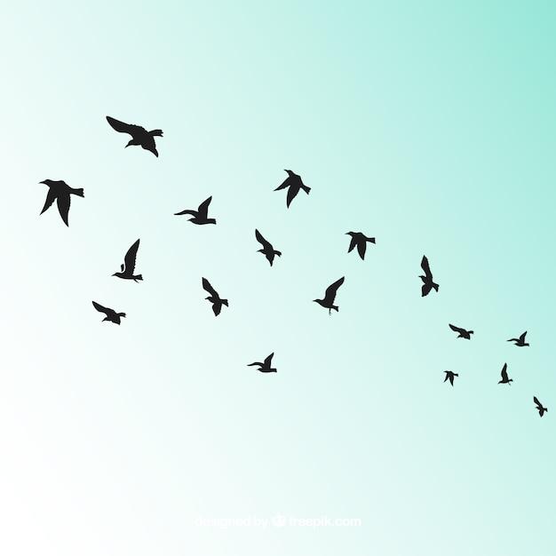 Silhouette Oiseau Volant Vecteur gratuit