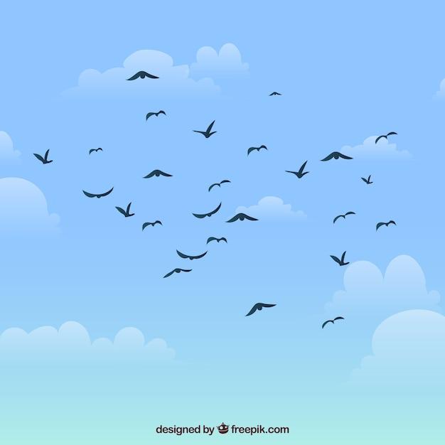 Silhouette Oiseau Volant Vecteur Premium