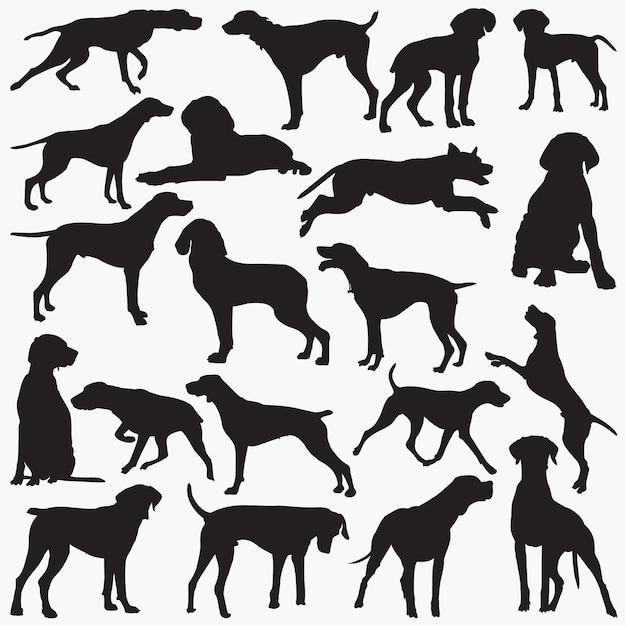 Silhouettes de chien pointeur Vecteur Premium