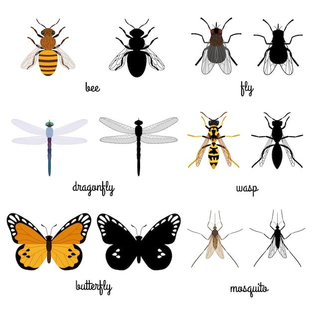 Silhouettes Colorées Et Noires Insectes Volants Isolés Sur Blanc Vecteur Premium