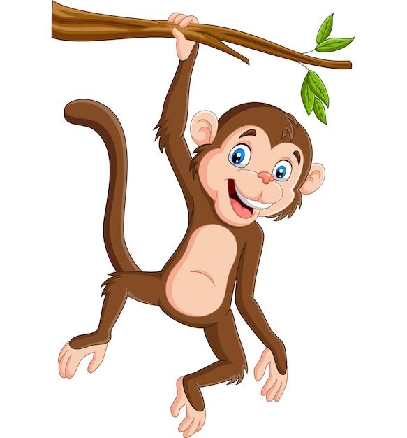 Singe cartoon suspendu dans une branche d'arbre Vecteur Premium