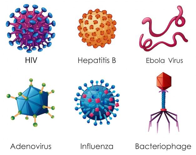 Six types de virus sur fond blanc Vecteur gratuit