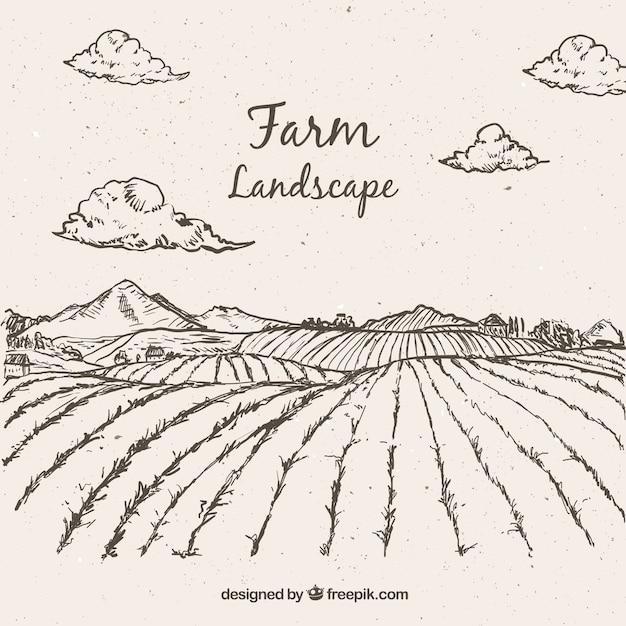 Sketches paysage agricole Vecteur gratuit