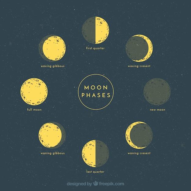 Sketches des phases lunaires Vecteur gratuit