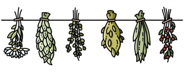 Sorcière Herbes Boho Suspendus Décoration De Style Plat Vecteur Premium