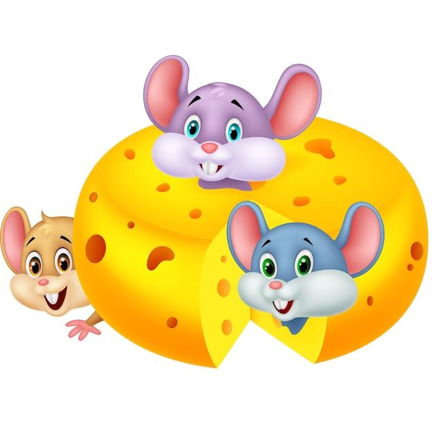 Souris de dessin animé se cachant à l'intérieur du fromage cheddar Vecteur Premium