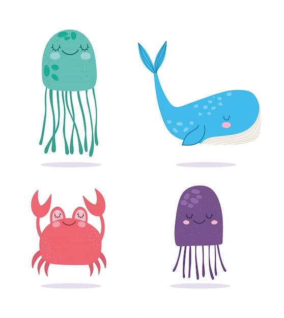 Sous La Mer, Méduses De Crabe Baleine Large Caricature De La Vie Marine Vecteur Premium