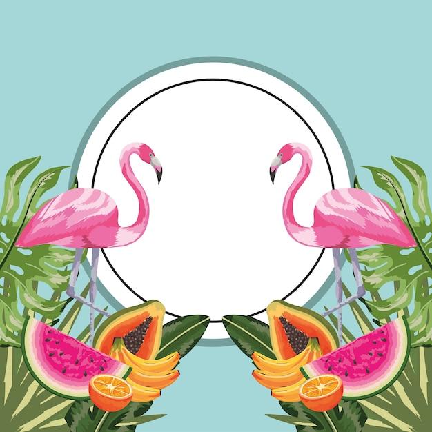 Sticker cercle avec flamant et fruits tropicaux Vecteur Premium