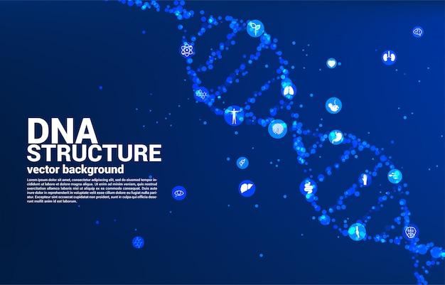 Structure Génétique De L'adn De Dot Random Avec Icône. Concept De Fond Pour La Biotechnologie Et La Biologie Scientifique. Vecteur Premium