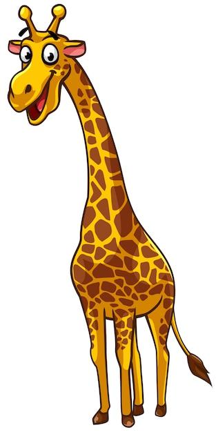 Style de dessin anim de girafe t l charger des vecteurs - Dessin de girafe en couleur ...