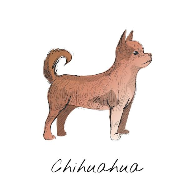 Style de dessin illustration de chien Vecteur gratuit