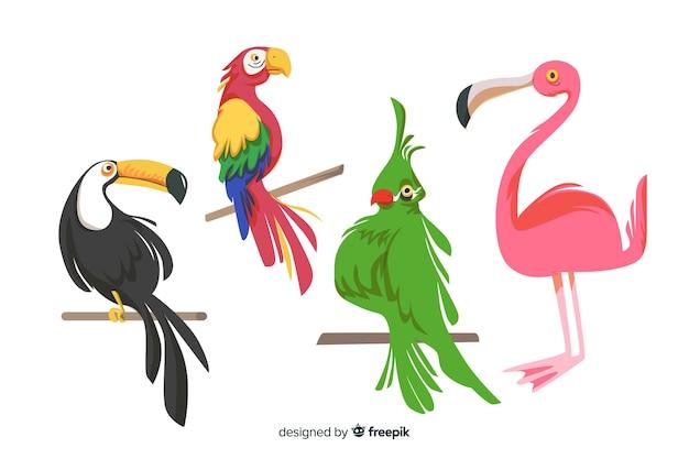 Style plat de la collection d'oiseaux exotiques Vecteur gratuit