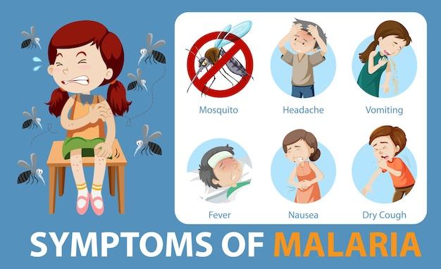 Symptômes De L'infographie De Style Dessin Animé De Paludisme Vecteur Premium