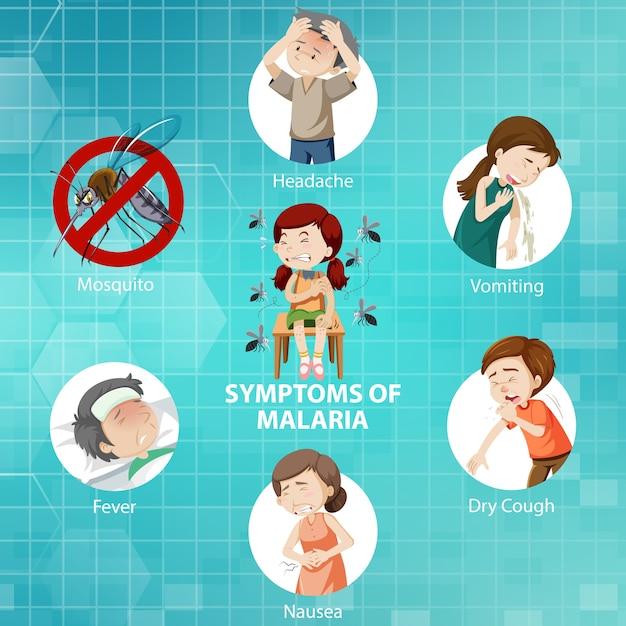 Symptômes De L'infographie De Style Dessin Animé De Paludisme Vecteur gratuit