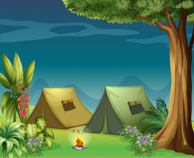 Tentes dans la jungle Vecteur Premium