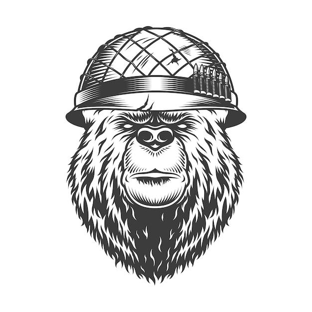 Tête D'ours Vintage Dans Un Casque De Soldat Vecteur gratuit