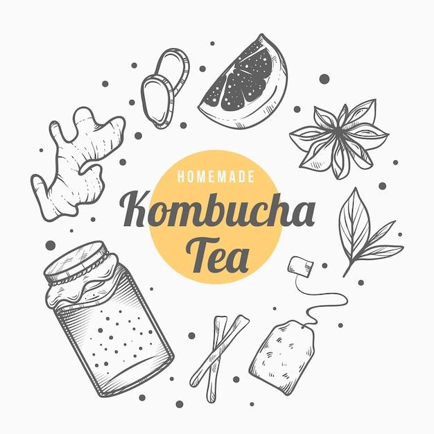 Thé Kombucha Dessiné à La Main Avec Des Ingrédients Vecteur gratuit