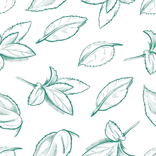 Thé à la menthe poivrée Vecteur Premium