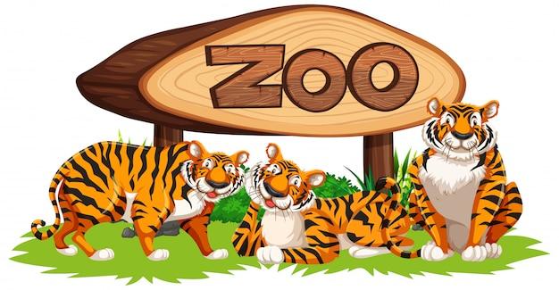 Tigre Avec Baner Zoo Vecteur gratuit