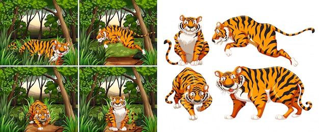 Tigre dans la forêt Vecteur gratuit