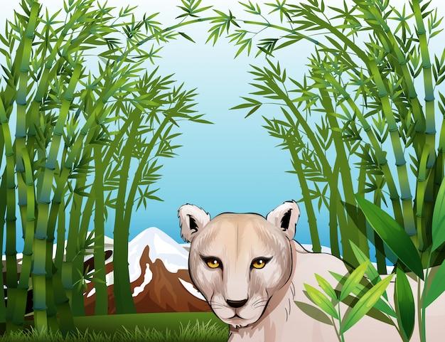 Un tigre effrayant à la forêt de bambous Vecteur gratuit