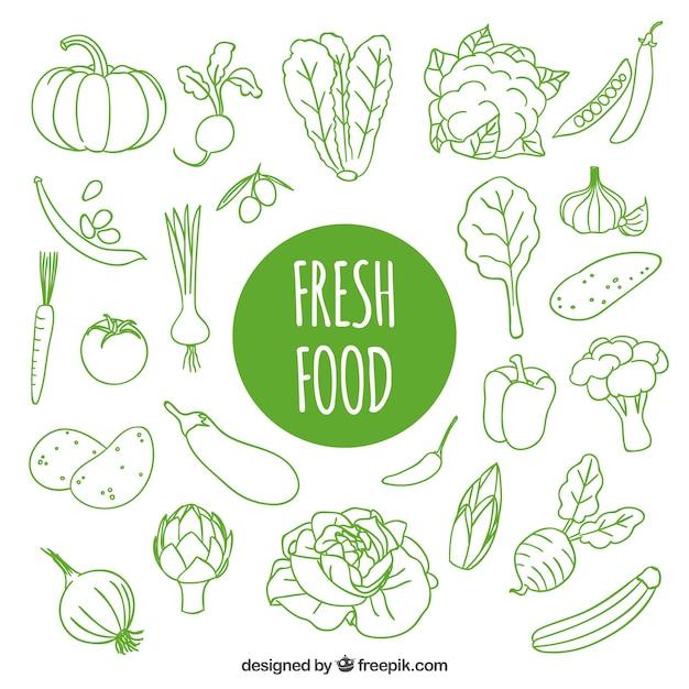 Tiré par la main des aliments frais Vecteur gratuit