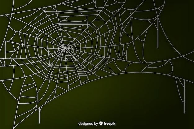 Toile D'araignée Réaliste Avec Dégradé Vecteur gratuit