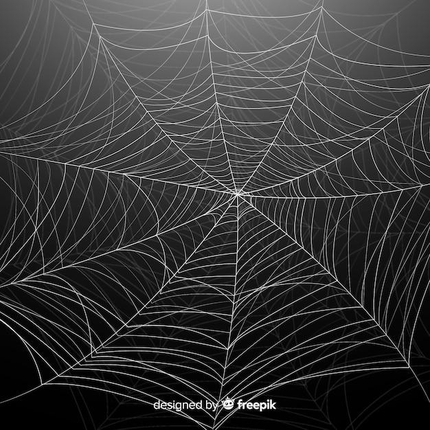 Toile de fond d'araignée halloween détaillée Vecteur gratuit