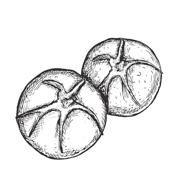 Tomate ligne art illustration dessinée à la main, vector art Vecteur Premium