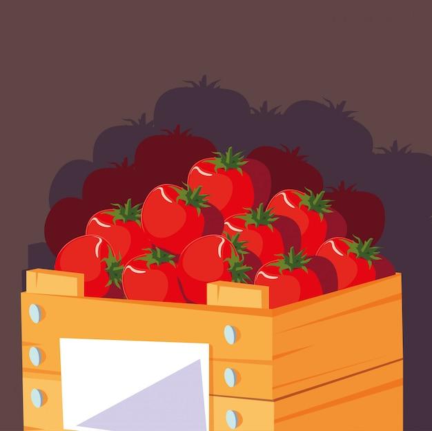 Tomates rouges fraîches dans une caisse en bois Vecteur Premium