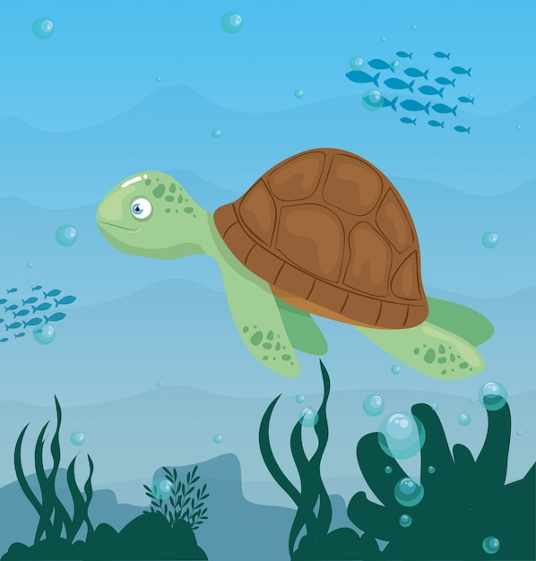 Tortue Animale Marine Dans L'océan, Habitant Du Monde Marin, Créature Sous-marine Mignonne, Habitat Marin Vecteur Premium