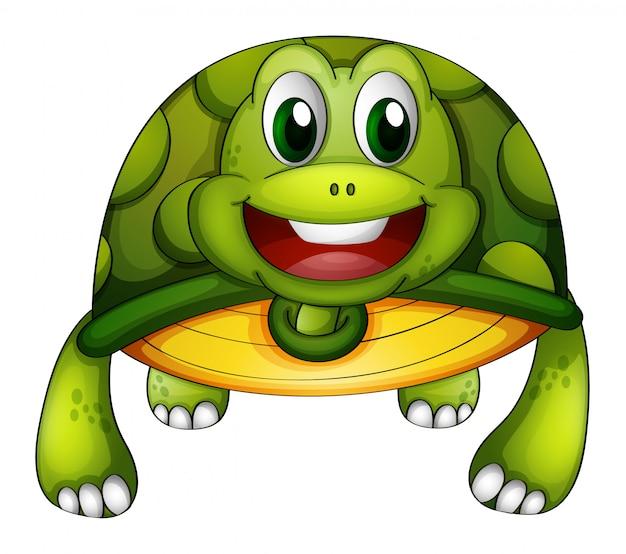 Une tortue verte Vecteur gratuit