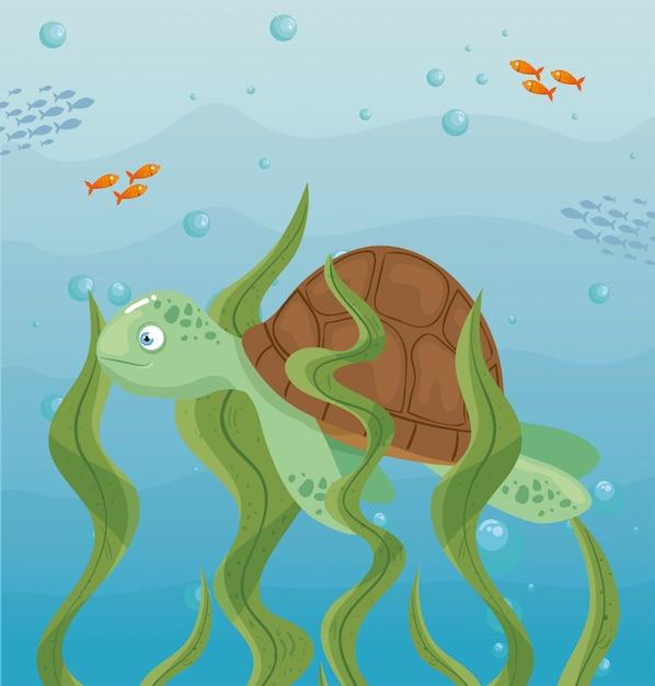 Tortue Et Vie Marine Dans L'océan, Habitants Du Monde Marin, Créatures Sous-marines Mignonnes, Faune Sous-marine Vecteur Premium