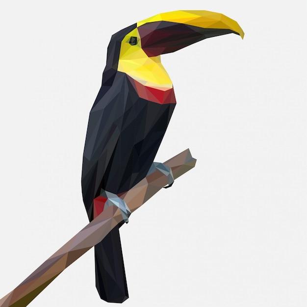 Toucan bird pose sur une branche avec style lowpoly Vecteur Premium