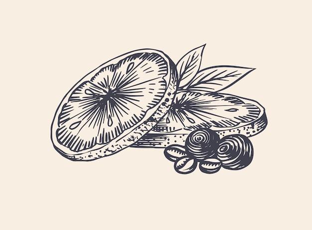 Tranches D'orange. Fruit D'été . Croquis Vintage Dessiné Main Gravé. Style De Gravure Sur Bois. Vecteur Premium