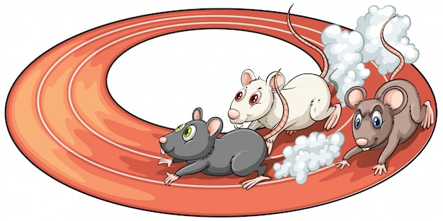 Trois rats en course Vecteur gratuit