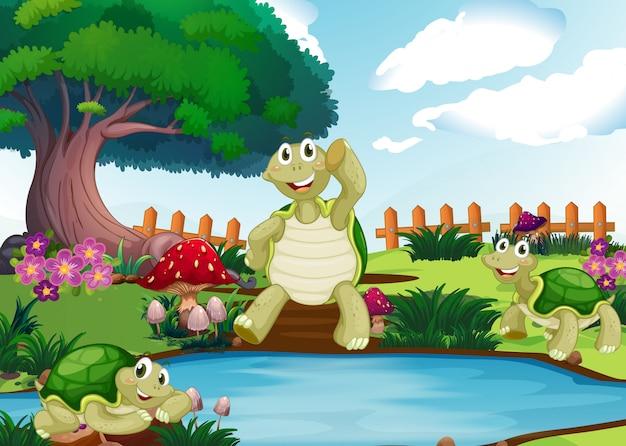 Trois tortues au bord de l'étang Vecteur Premium