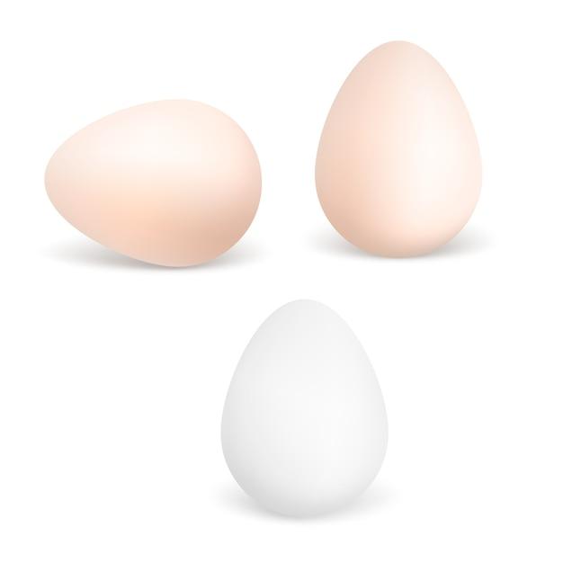 Trois vector oeufs réalistes. œufs de poule isolés Vecteur Premium