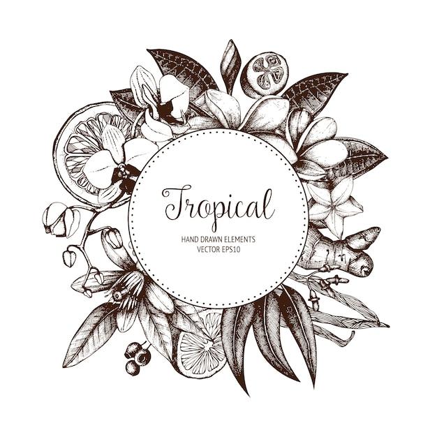 Tropical. Couronne Vintage De Plantes Exotiques Esquissées à La Main. Vecteur Premium