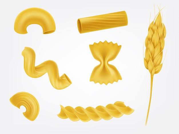 Types de pâtes et formes ensemble de vecteur réaliste Vecteur gratuit
