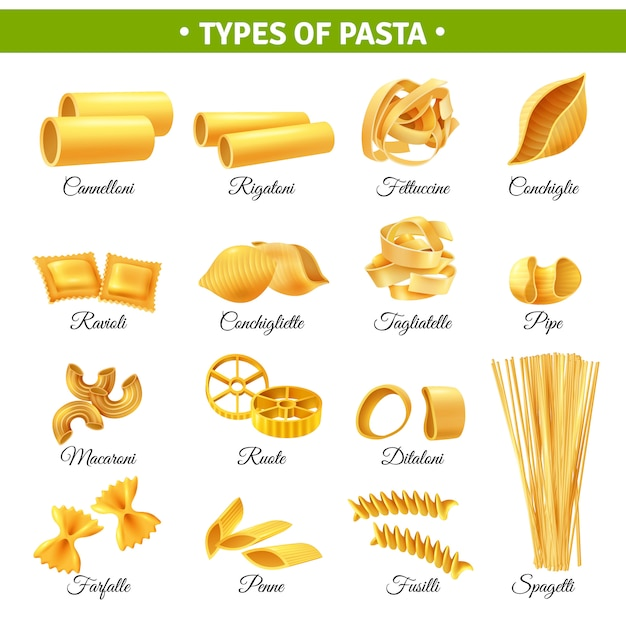 Types De Pâtes Infographiques Vecteur gratuit