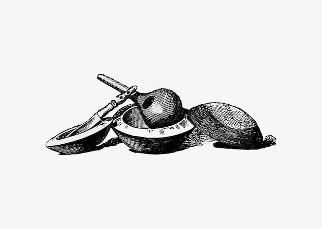 Ustensiles de cuisine antiques Vecteur gratuit