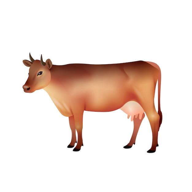 Vache brune réaliste Vecteur gratuit
