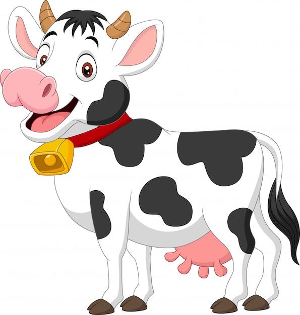 Vache Heureuse De Dessin Animé Isolé Sur Blanc Vecteur Premium