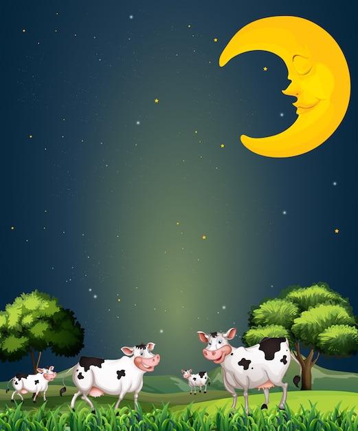 Vaches sous la lune endormie Vecteur Premium
