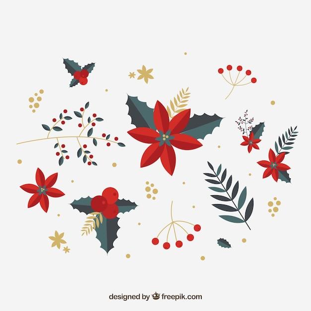 vari t de fleurs d 39 hiver rouge t l charger des vecteurs premium. Black Bedroom Furniture Sets. Home Design Ideas