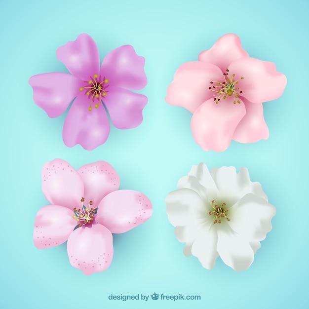 vari t de fleurs de cerisier r alistes t l charger des vecteurs gratuitement. Black Bedroom Furniture Sets. Home Design Ideas