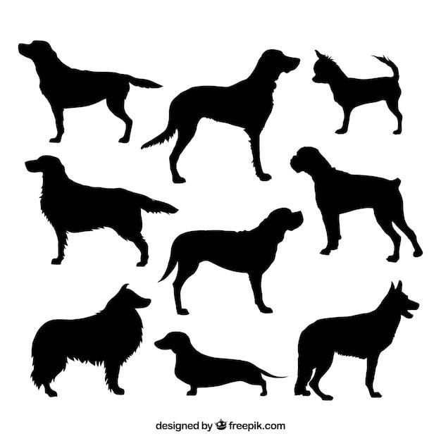 Variété de silhouettes de chiens Vecteur gratuit