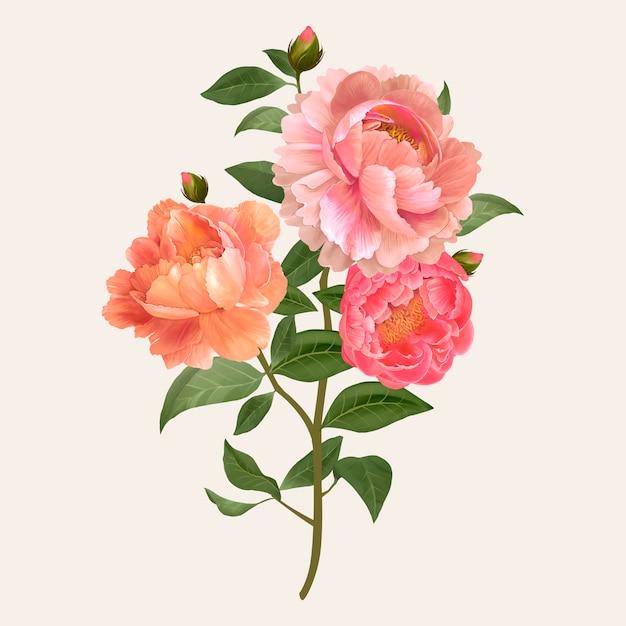 Vecteur de bouquet de fleurs vintage Vecteur gratuit