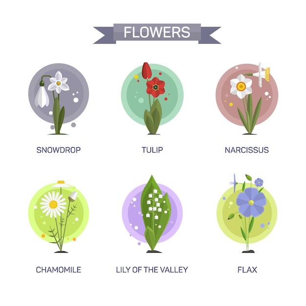 Vecteur de fleurs ensemble isolé. illustration dans la conception de style plat. tulipe, camomille, perce-neige, lis, narcisse, lin. Vecteur Premium
